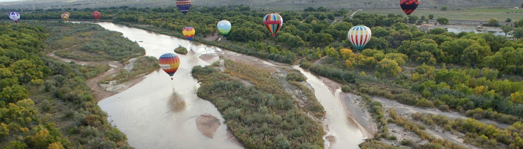 Hot Air Balloons #3