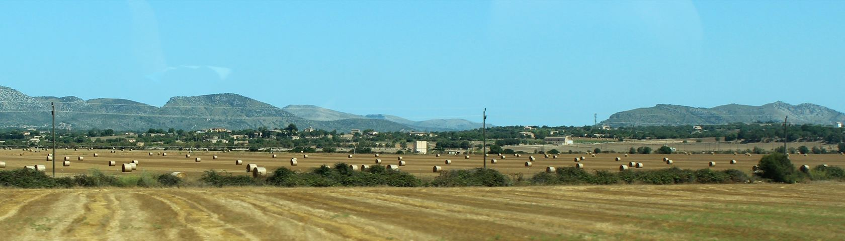 Fields of Mallorca
