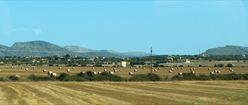 Fields of Mallorca