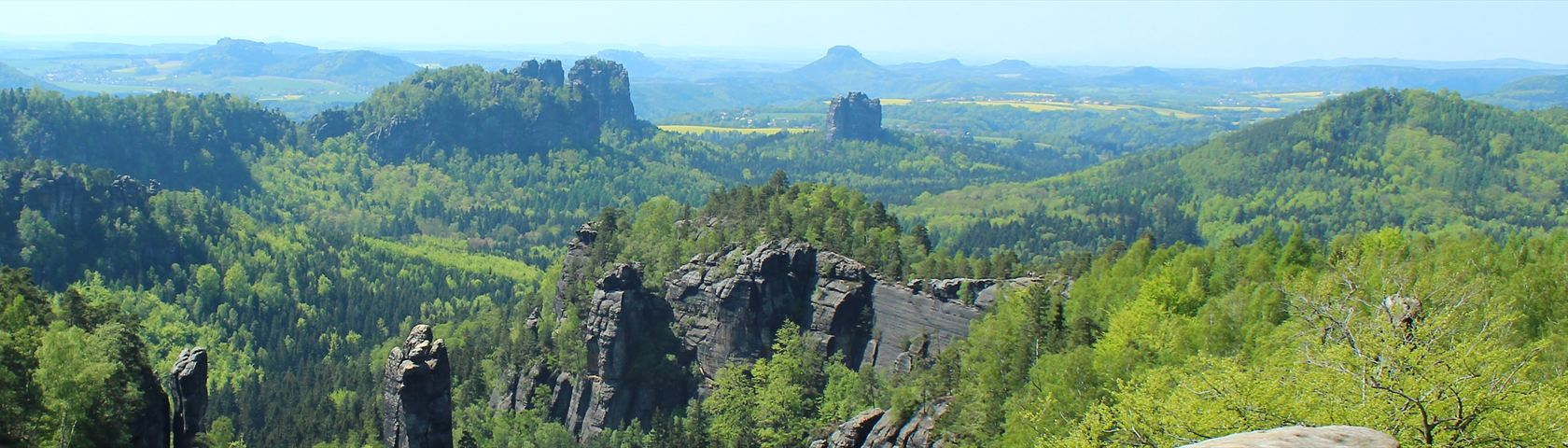 Beautiful Saxony #1