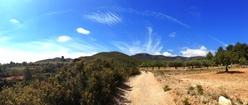 Spanish Mediterranean Landscape