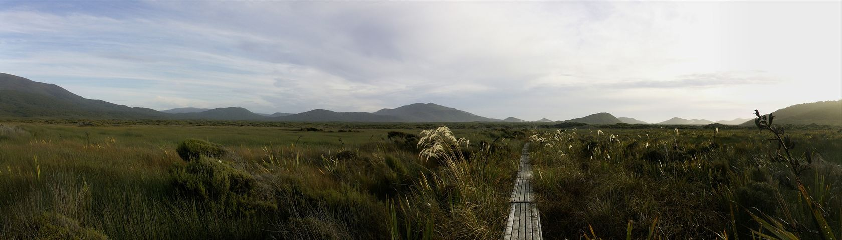 Mason Bay Boardwalk Panorama