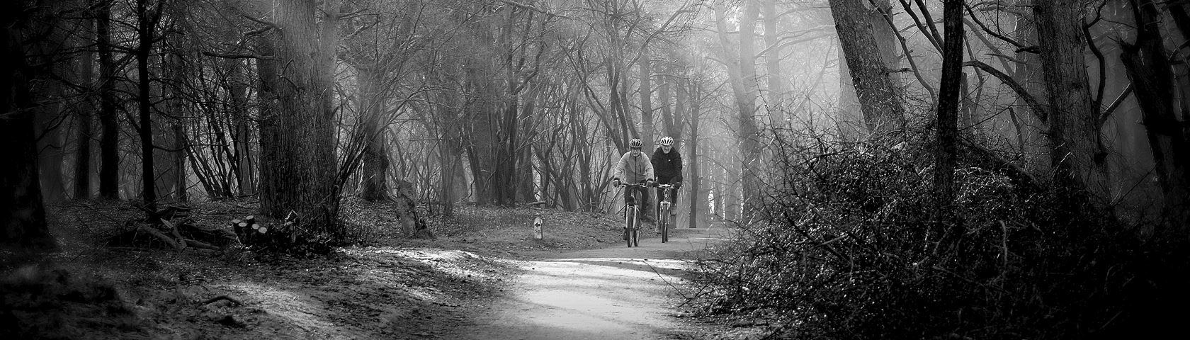 Forrest activity Hilversum