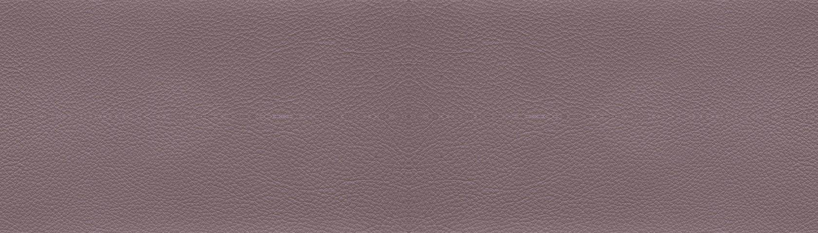 Taupe Leather