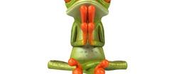 Cute Frog Praying