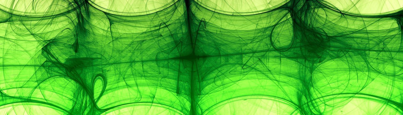 Bamboo Reed X-Ray