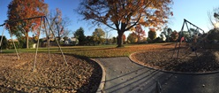 Autumn Park Shot #2