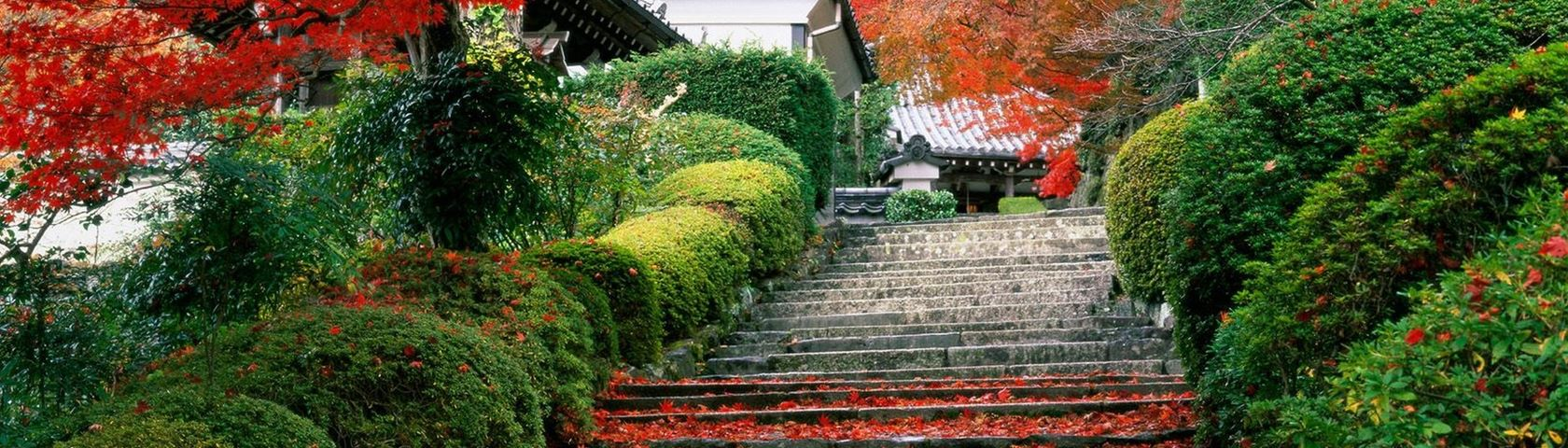 Garden Stairs in Japan