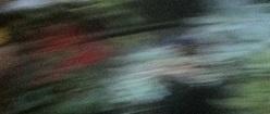 Zezi Abstract