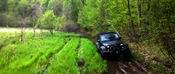Jeep Forest Trail