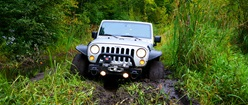 Jeep in mud