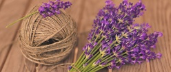 Lavender Twine