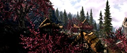 Dragon Bridge, a Town in Skyrim