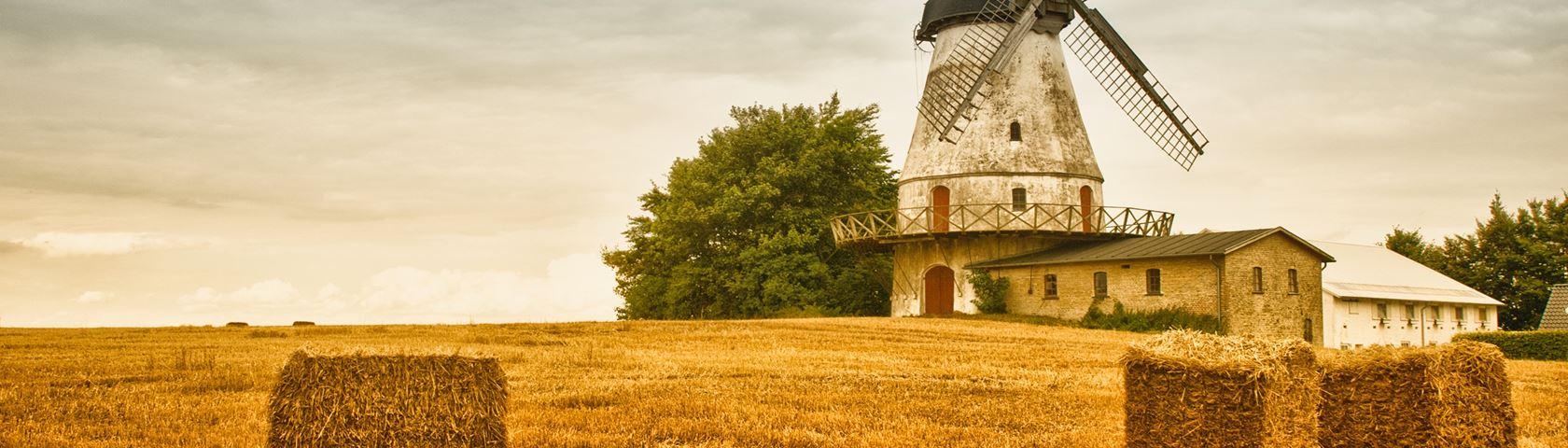 Farmland Windmill