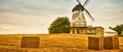 Farmland Windmill