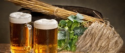 Lager with Hops and Wheat