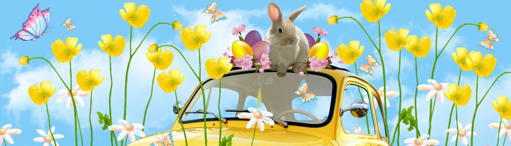 Easter Fiat