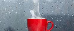 Rainy Day Cuppa