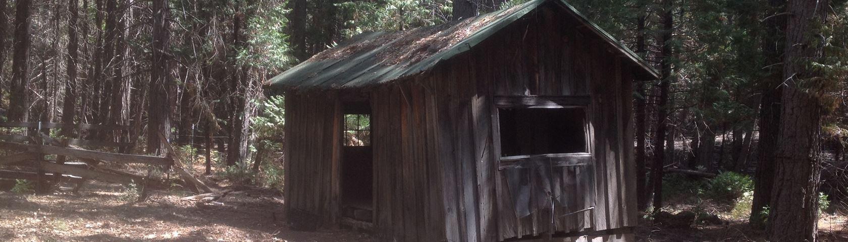 Sierras Logging Camp