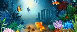 Undersea Paradise