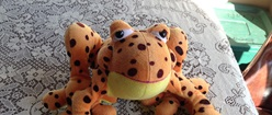 Stuffed Orange Frog