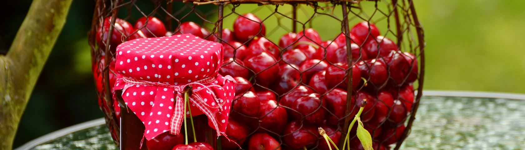 Basket of Cherries