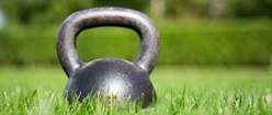 Kettlebell - In the wild