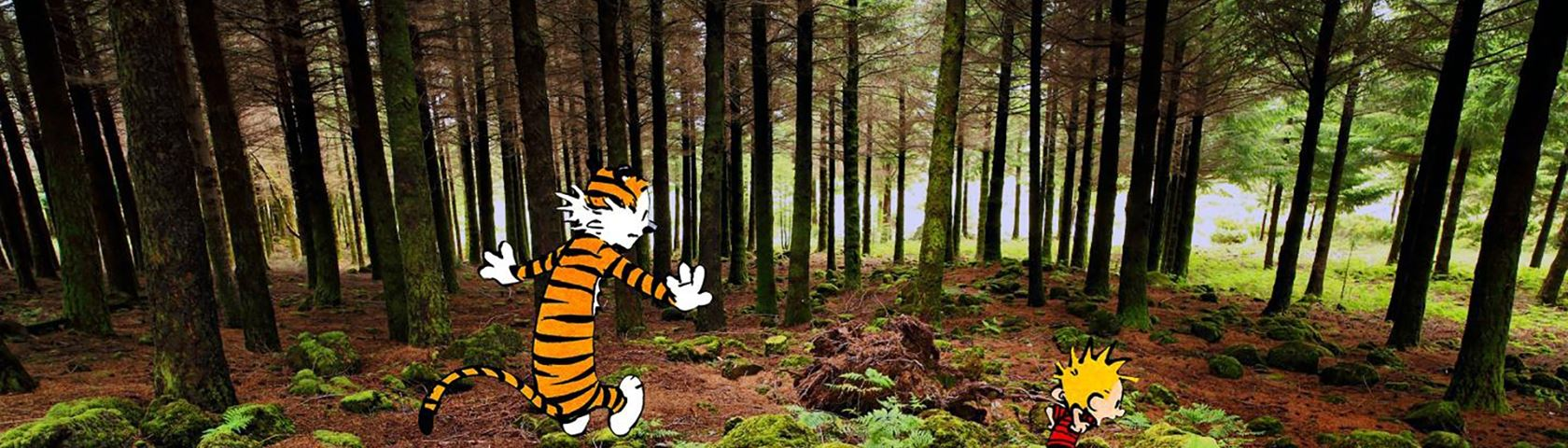 Calvin and Hobbes in the Woods #2