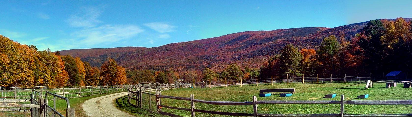 Autumn Pasture at Hildene