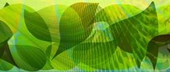 Leaf Collage Fractalized