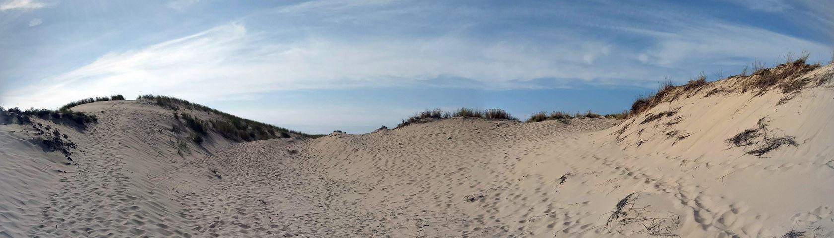 Sandprints