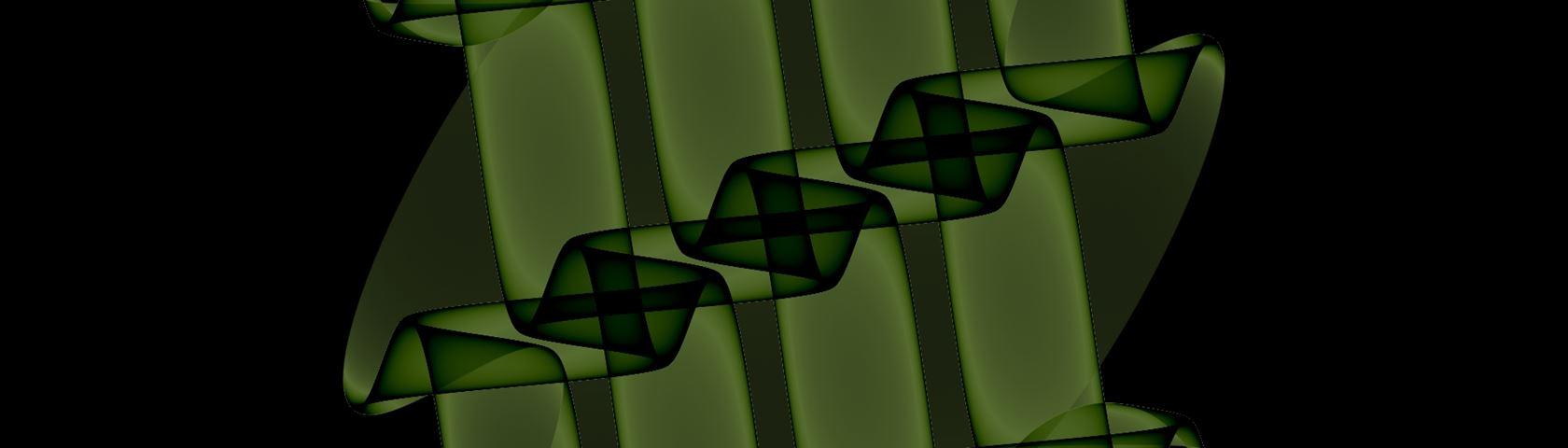 Green Wrapper