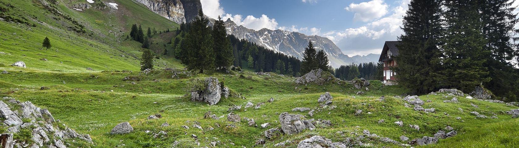 Swiss Alps Zen Relax