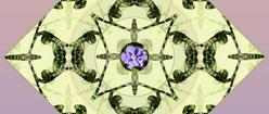Purple Flower with Green Symmetry