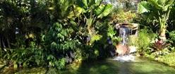 Waterfall in Pirenopolis