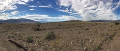 Down in Death Valley