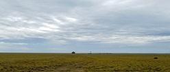 Alone in New Mexico