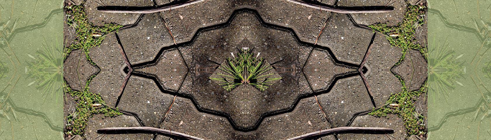 Pine Needles and Pavement Symmetry