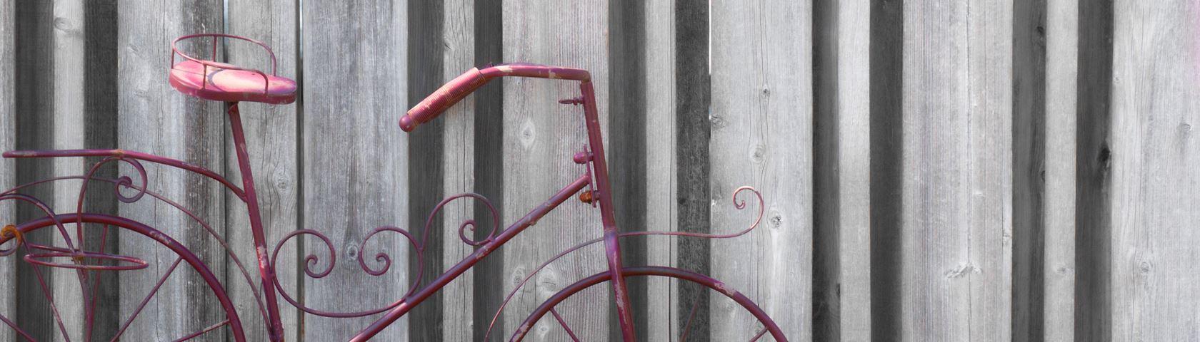 Ornamental Bike