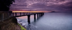 Bridge Under Purple Sky