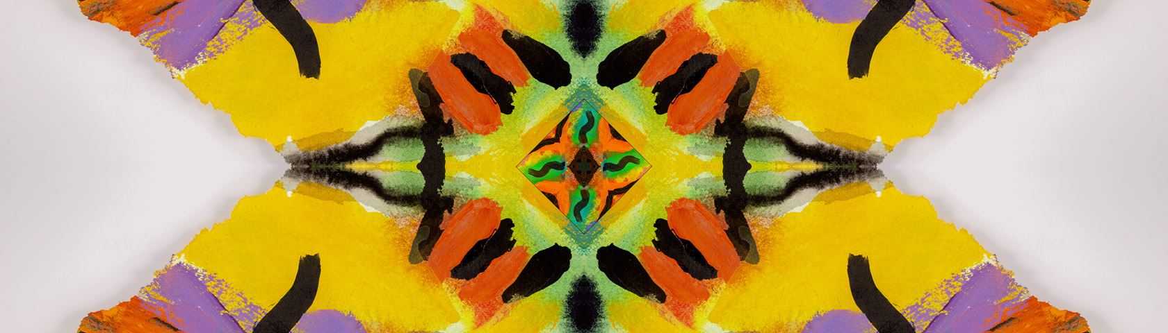 Art Symmetry with Wild Colors