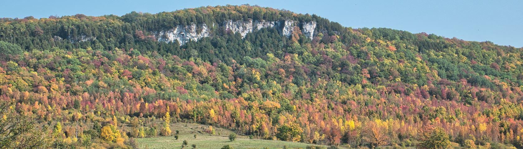 Fall Escarpment