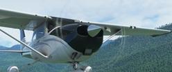 FS2020 Cessna 150