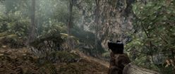 Battlefield: Bad Company 2: In the Woods
