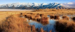 Marsh by the Mountains