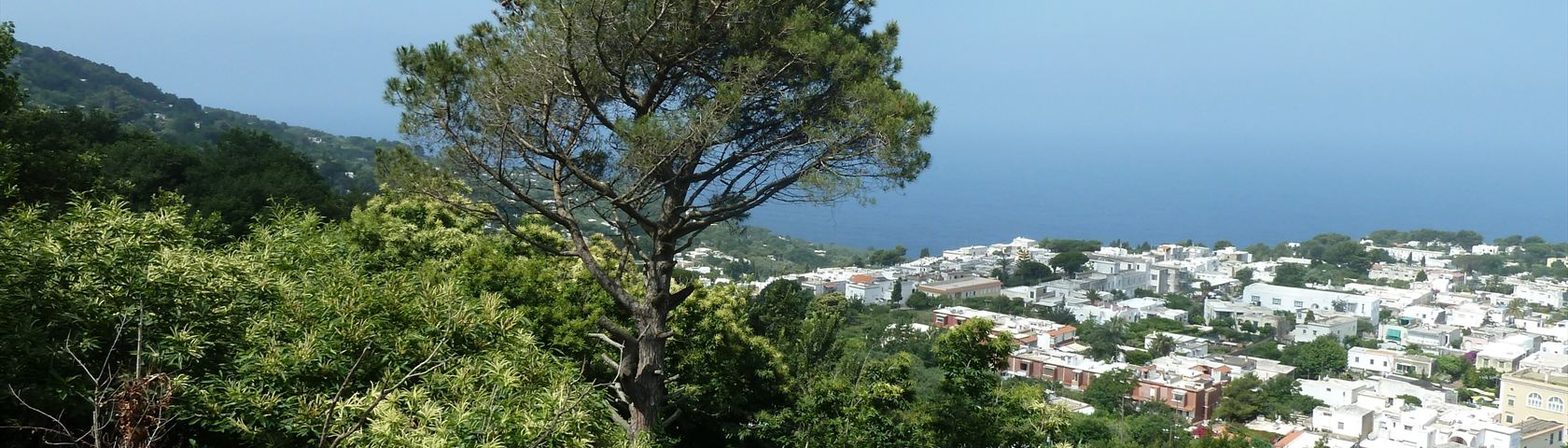 Sky and Turf of Capri