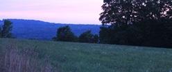 Meadow Heaven