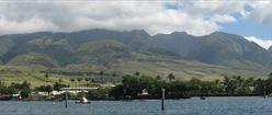 Maui Shore