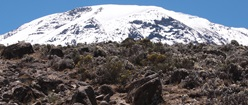 Snow covered Kilimanjaro