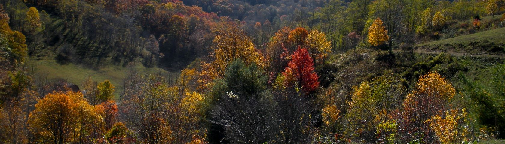 Smokey Mountains in North Carolina